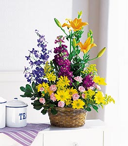 Easter flowers and Gifts