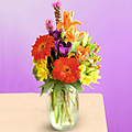 Thanksgiving flowers and Gifts